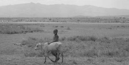 Ikke-blot-mennesker-sulter-under-tørken-i-Tanzania